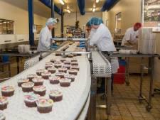 'Laagopgeleiden zijn de verliezers van deze arbeidsmarkt'