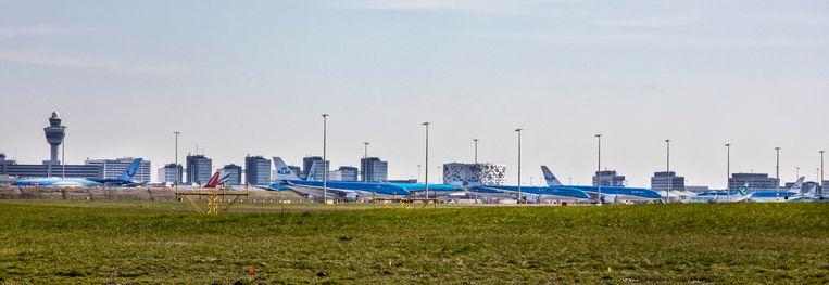 KLM-vliegtuigen staan geparkeerd bij de polderbaan.  Beeld null