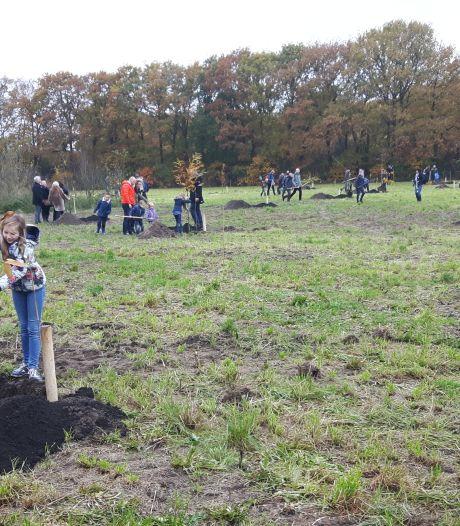 Bomen voor overleden corona-slachtoffers in Den Bosch, misschien wel in een levensbomenbos