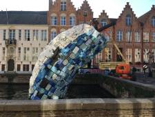 Immense walvis op weg naar Utrecht