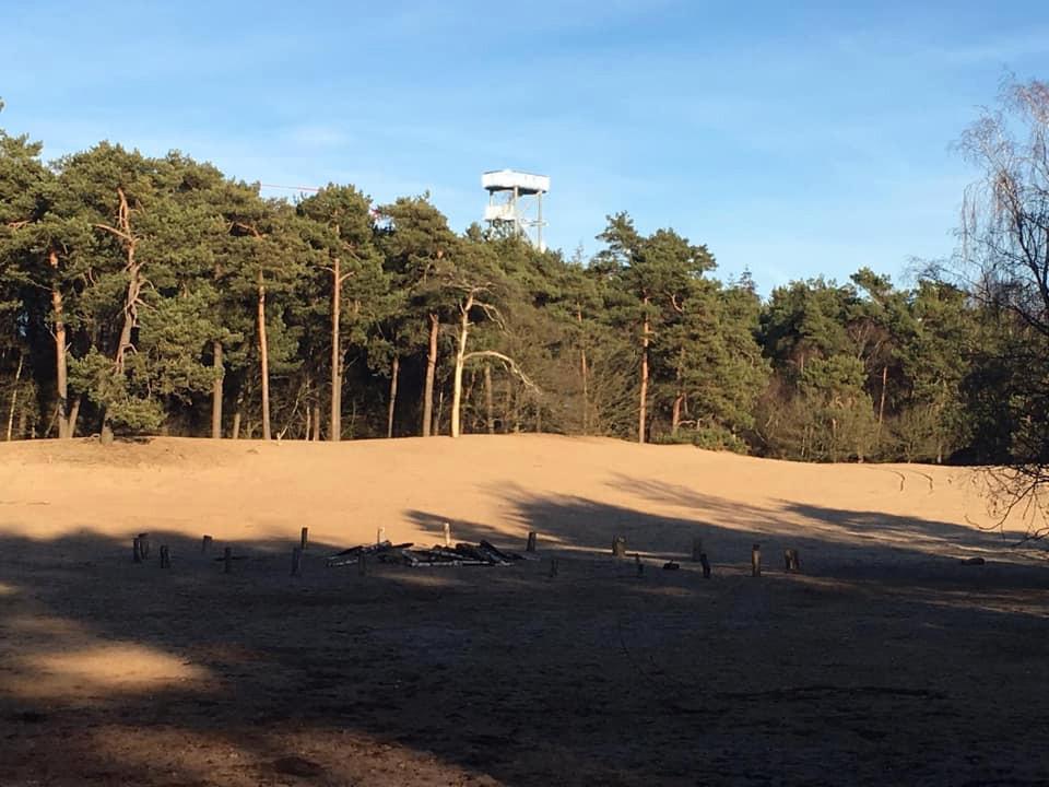 De zandvlakte op Herperduin.