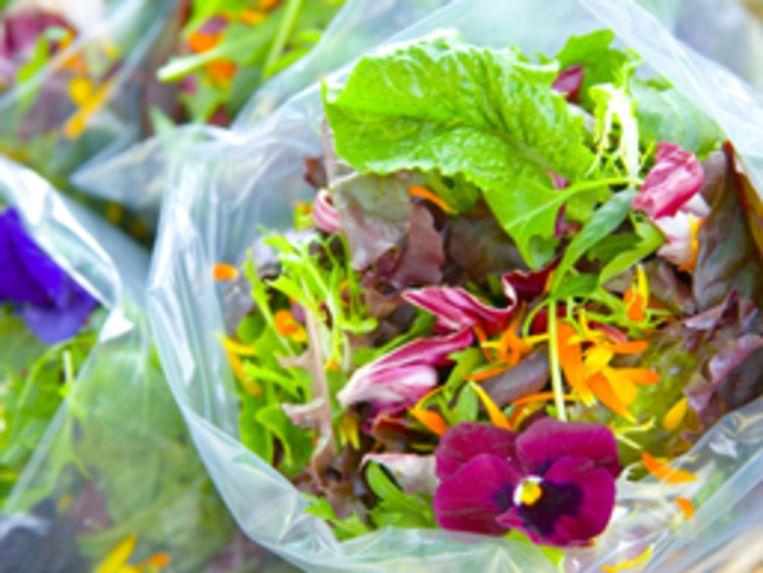 salade-met-bloemen1-jpg.jpg