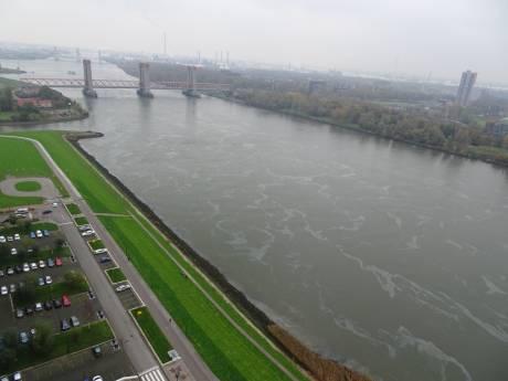 'Kilometerslang oliespoor op water nu op Nieuwe Waterweg'
