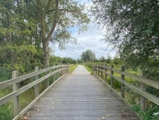 """Nieuw park aan R4 in Mariakerke: """"We laten de natuur hier spontaan groeien"""""""