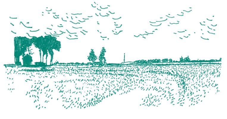 Noordoost-Groningen Beeld Joost Stokhof