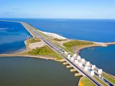 Afsluitdijk krijgt eigen 'kliffenflora' terug