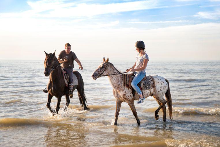 Weinig spreekt meer tot de verbeelding dan op een paard op het strand de zonsondergang tegemoet te rijden.