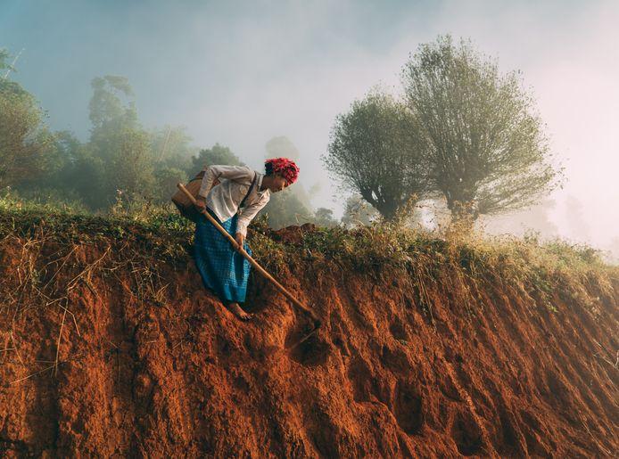 Vorig jaar won Jorgo al de publieksprijs van de fotowedstrijd van National Geographic met een foto van een werkende vrouw in de velden van Myanmar.