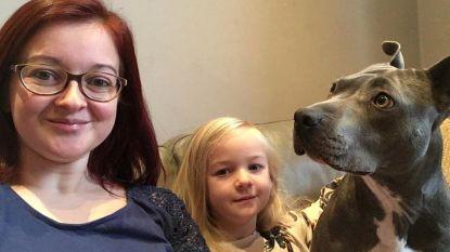 Jong koppel redt manke hond en zoekt 1.600 euro voor operatie