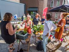 Op de stekjesmarkt van Jacomijn Prinsen in Borne ontstaan ook nieuwe contacten