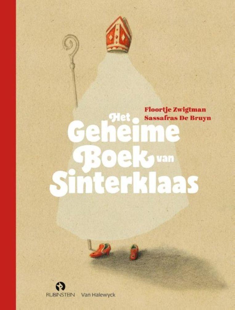 'Het geheime boek van Sinterklaas' van Floortje Zwigtman. Beeld