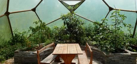 'Iedereen met stuk land kan een voedselbos beginnen'