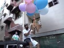 Influencer bindt hondje vast aan heliumballonnen en laat dier vliegen voor miljoenenpubliek