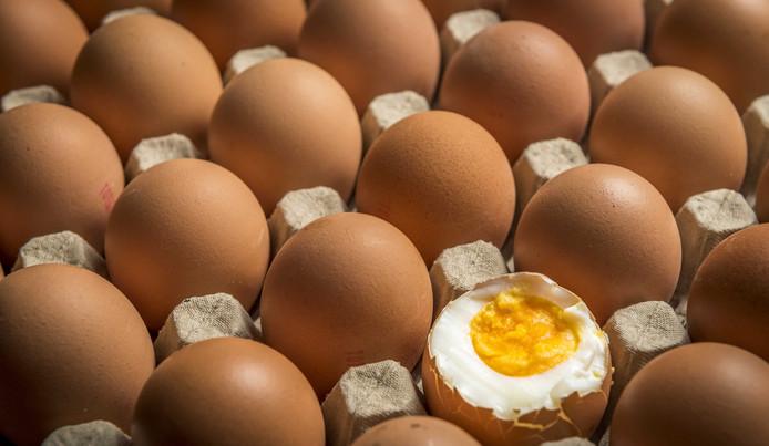 Een ei. Er worden mogelijk al een jaar lang eieren aan de consument aangeboden die te veel fipronil bevatten.