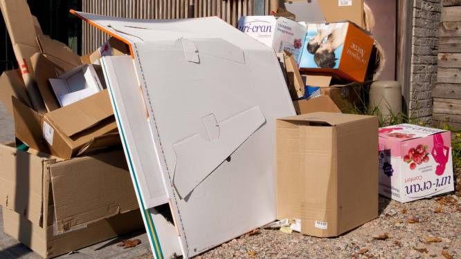 """Oud papier en karton in verschillende straten blijven staan: """"Ophaling gebeurt maandag"""""""