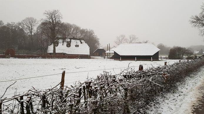 Het witte landschap deze ochtend.