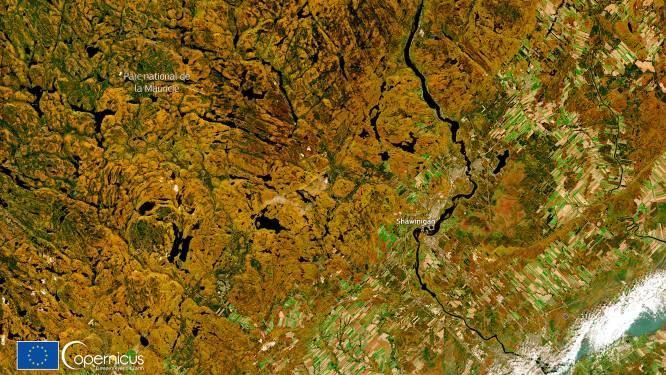 Herfstkleuren opgepikt vanuit de ruimte: satelliet brengt prachtig bladerdek in Canada in beeld