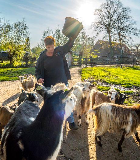 Gemeente en Natuurlijk Delfland botsen om scholenschuif in Tanthof