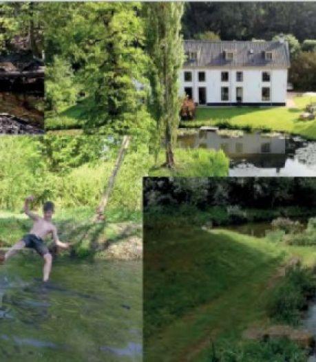 Meer water opvangen en meer groen, zo gaat West-Brabant klimaatverandering te lijf