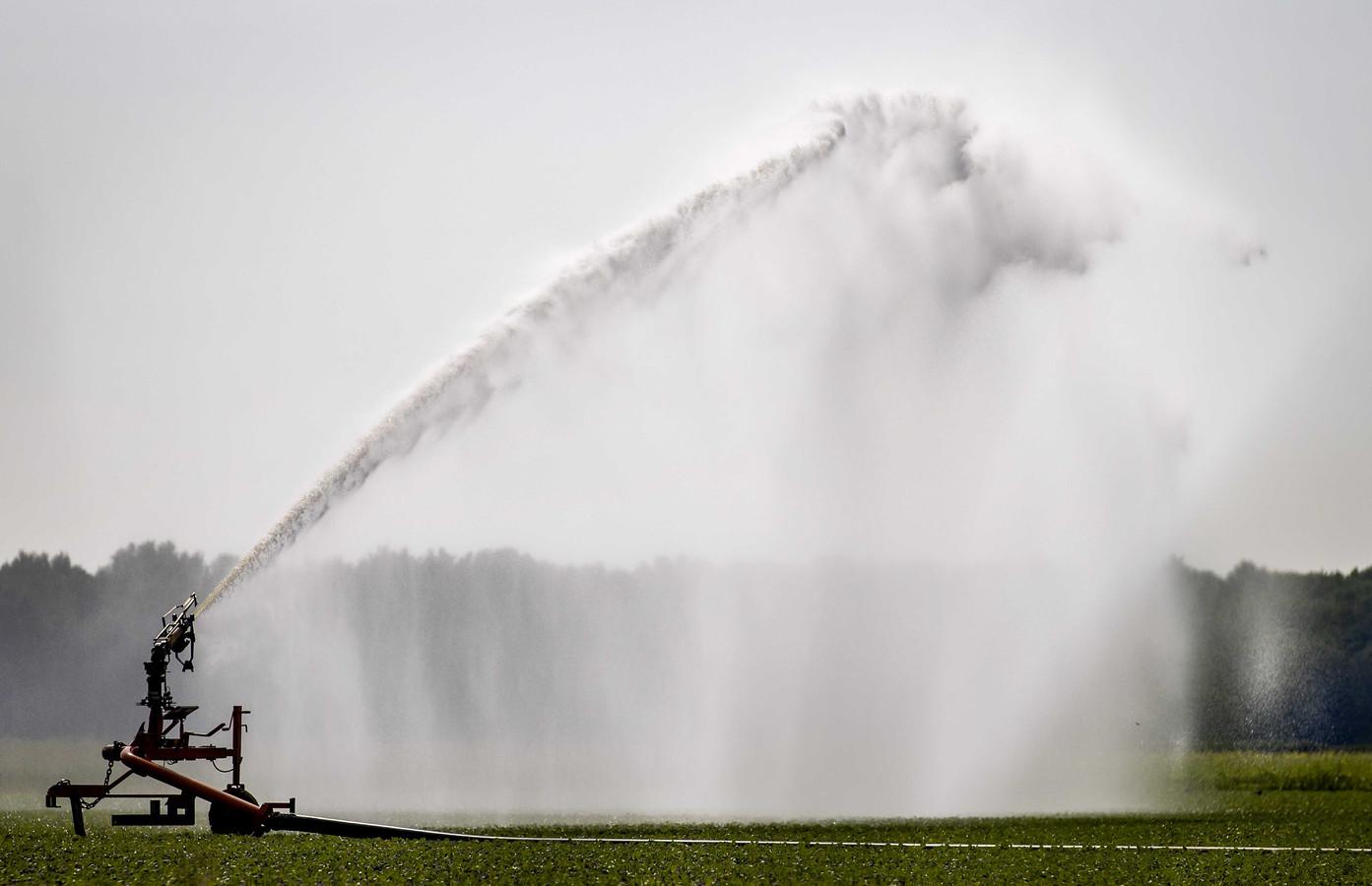 Vanwege de droogte geldt een sproeiverbod in een groot deel van Brabant.