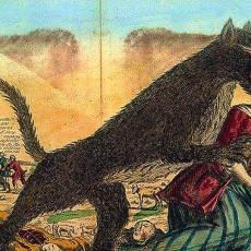 de-grote-boze-wolf-reprise