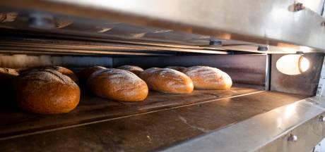 Nieuw: Achterhoeks brood van eigen bodem