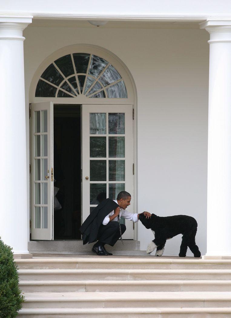 President Obama aait zijn hond buiten het Oval Office.  Beeld EPA
