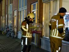 Ouders, dochtertjes én hondje maken het goed na brand in Tilburg: 'De hele buurt wil helpen'