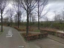Zorgen over begroting van Hilvarenbeek én over vervuilde geluidswal bij Doelakkers