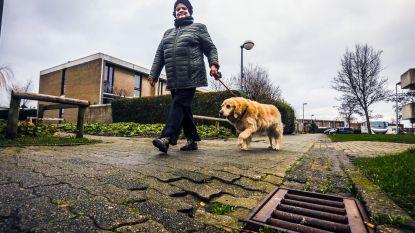 Herstel voetpaden Nieuwe stad blijft uit