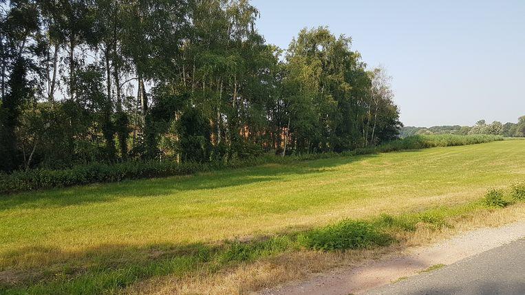 Voor deze site diende QDF vorig jaar al eens een omgevingsvergunning in voor een runderbedrijf van 1.499 runderen en 25.000 vierkante meter verharde ruimte. Nu is dat 135 koeien en 2.500 vierkante meter.