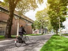Protest tegen centrale voor biomassa in Arnhem zwelt aan