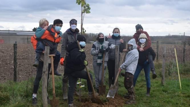 Keerpunt Freinetscholen plant bomen voor de Warmste Week