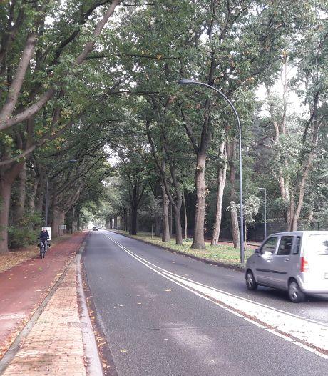 Doorsteek van Bredaseweg naar Lage Molenpolderweg? 'Eén van de mogelijke oplossingen'