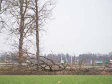 Raadsleden geschokt door rapport: stop de illegale kap en sloop van het landschap in Berkelland!
