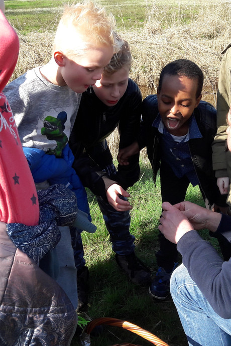 Kinderen Dedemsvaart smikkelen vanuit de natuur