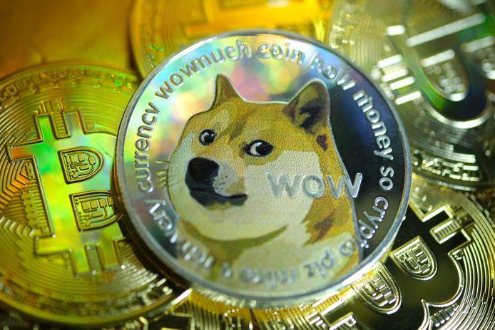 De waarde van Dogecoin is sinds begin dit jaar met meer dan 2000 procent gestegen.