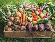 Vegan op het platteland? Dat is allesbehalve makkelijk