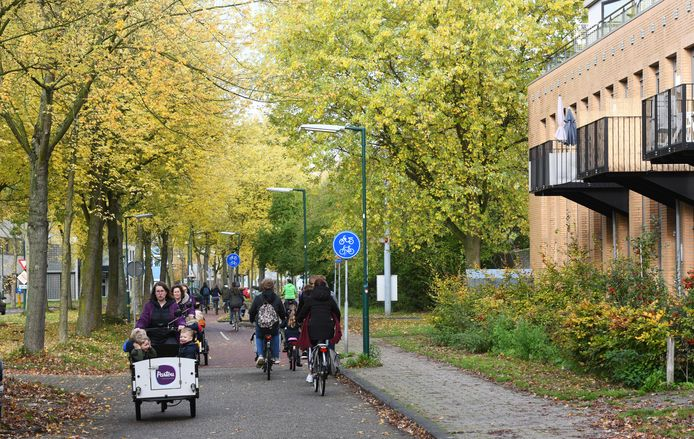 Aan de Molenzoom in Houten verrijzen nieuwe appartementencomplexen. Liever dan alleen nieuwe parkeerplekken aan te leggen, denkt de gemeente na over alternatieve manieren om het autogebruik te verminderen.