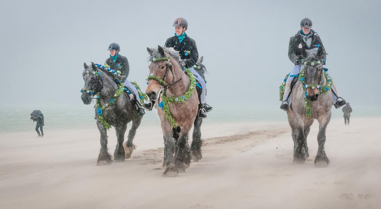 Strao: paarden en ruiters op een Zeeuws strand.