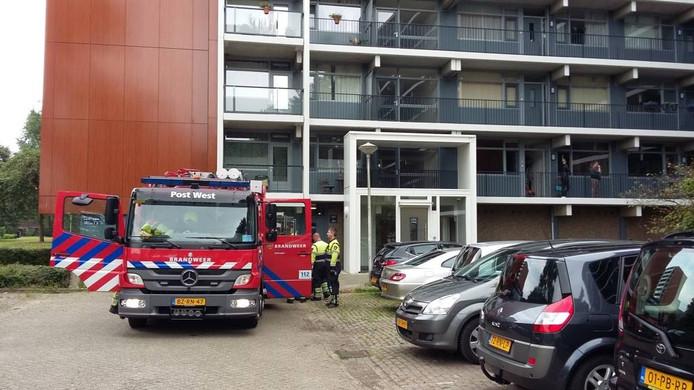 De brandweer hoefde in Meijhorst alleen te controleren of de brand echt goed uit was. Foto DG