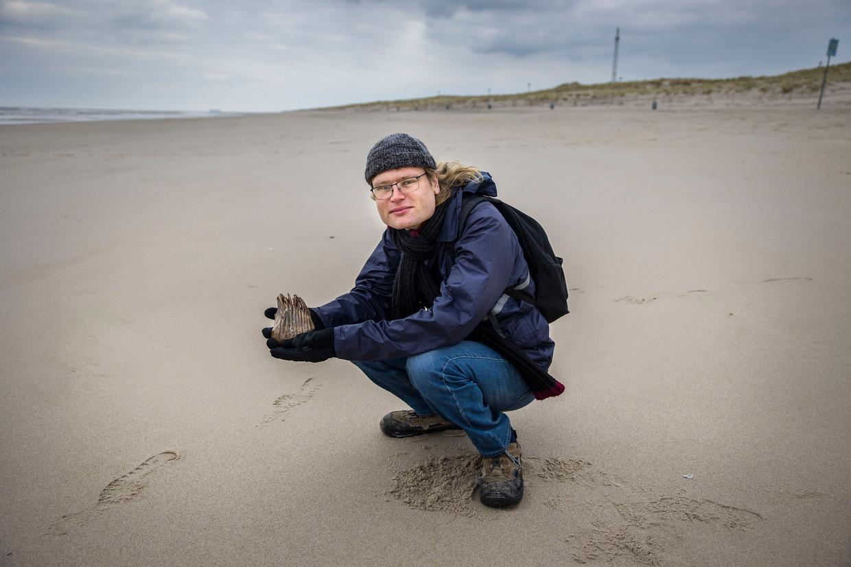 Bioloog  en conservator Bram Langevel op de Maasvlakte bij Rotterdam . 'Hier lag vroeger een steppelandschap en niet, zoals vaak gedacht wordt, een besneeuwde toendra zoals die nu in Siberië ligt.'