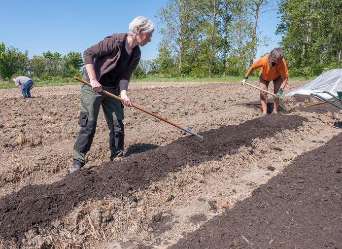 Karin Körver (voorgrond) en Petra de Ruiter aan het werk in hun tuin.