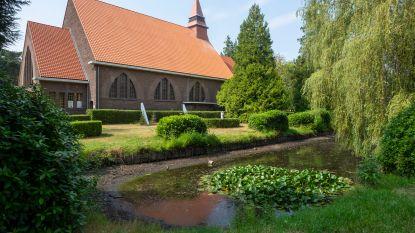 Hittegolf treft vijver aan kerk O.L.V. Koningin: water staat laag, giftige blauwalg duikt op