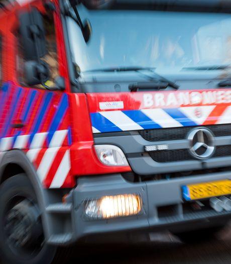 Grote brand verwoest bedrijfspand in Haarlem, oorzaak onbekend