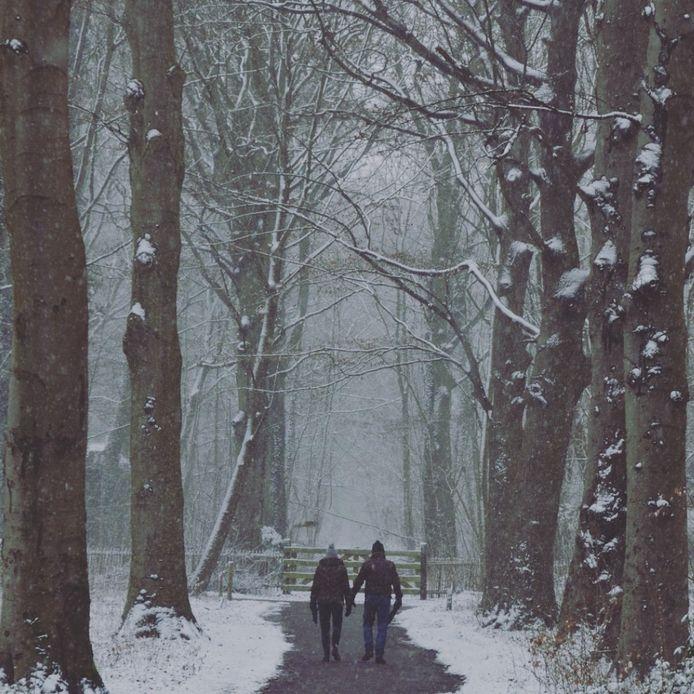 Claudia Troost genoot van een prachtige winterse wandeling door het Staelduinse bos.