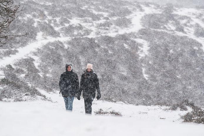 Winter op de Posbank.