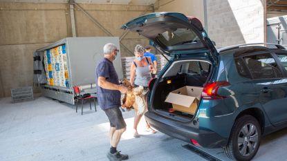 Inwoners halen meer dan 500 legkippen af bij 't Kippenhof