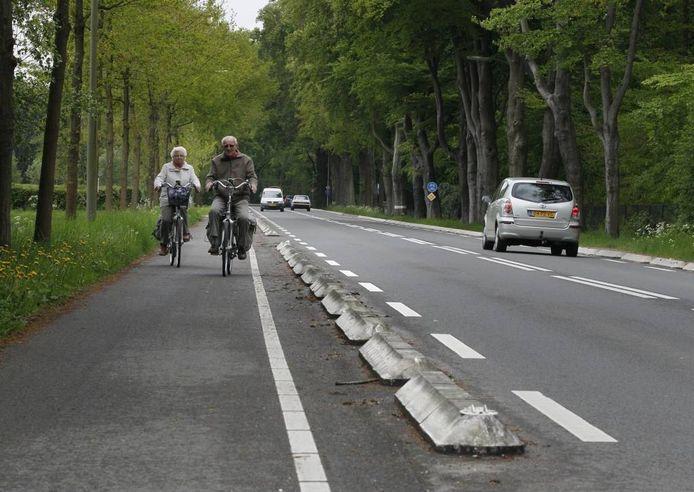De Heerderweg tussen Heerde en Epe. foto Cees Baars