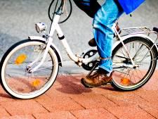 Zonder de mevrouw van de winkel blijkt een fiets opvouwen toch nog een heel karwei te zijn